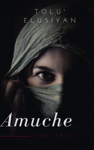 Cover design - Amuche The Trio